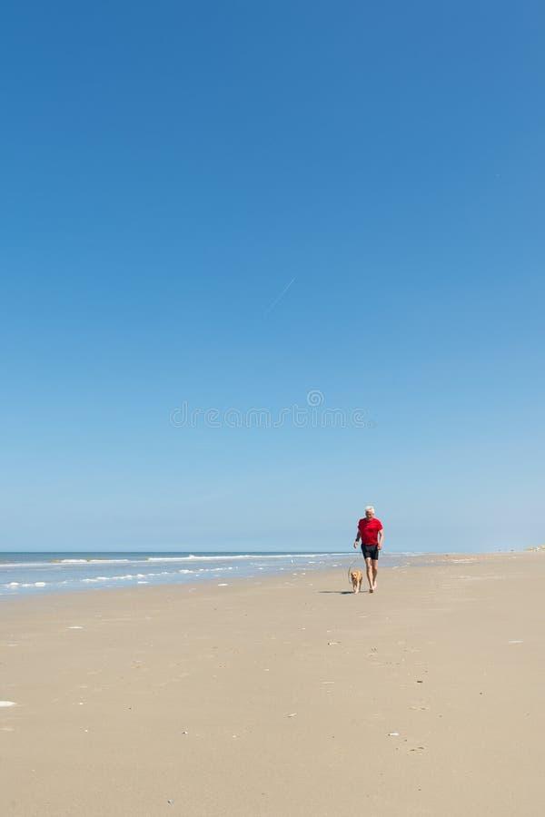 Бежать с собакой на пляже стоковые фотографии rf