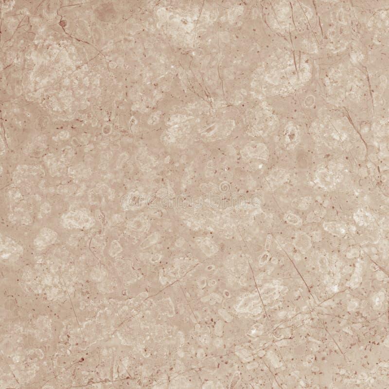 бежевая мраморная текстура стоковые изображения
