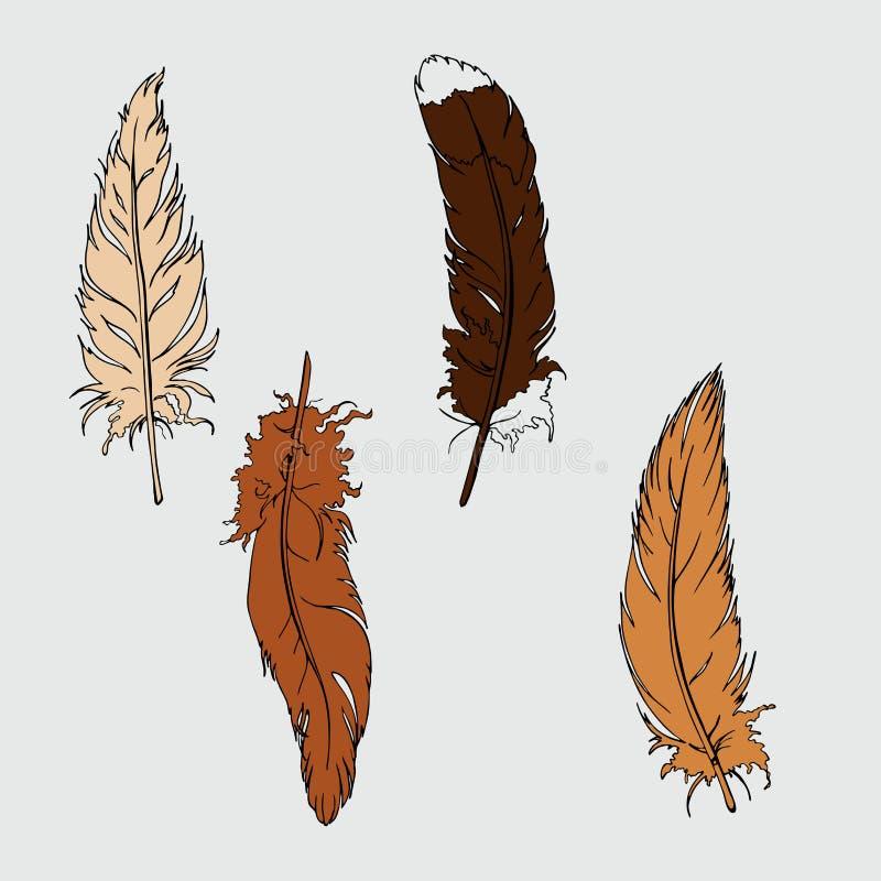 Бежевый и коричневый набор пер Нарисованный рукой эскиз вектора бесплатная иллюстрация