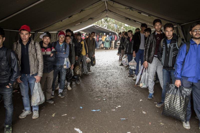 Беженцы ждать для того чтобы войти Хорватию на хорватской сербской границе, на маршруте Балканов, во время кризиса беженца стоковые фотографии rf