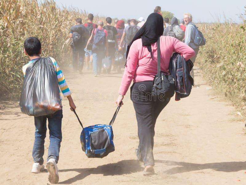 Беженцы идя через поля около границы Хорватии Сербии, между городами Sid Tovarnik на трассе Балканов стоковая фотография rf