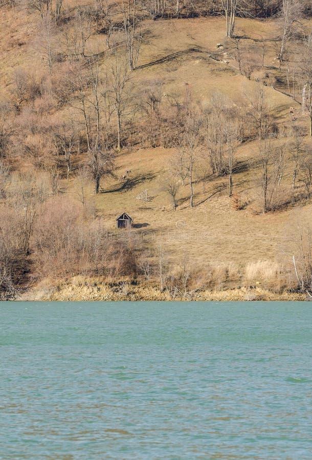 безмолвие места природы ландшафта озера рыболова красотки стоковая фотография rf