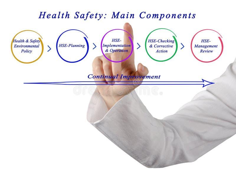 Безопасность здоровья: Главные компоненты стоковые фотографии rf
