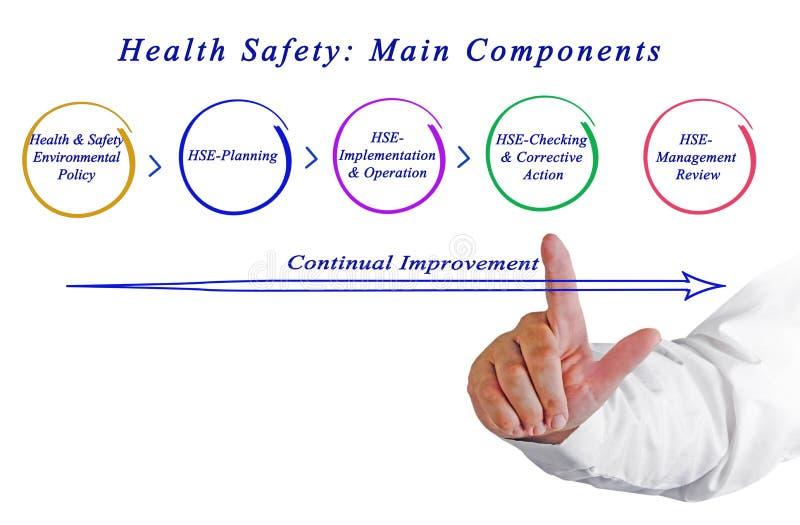Безопасность здоровья: Главные компоненты стоковые фото