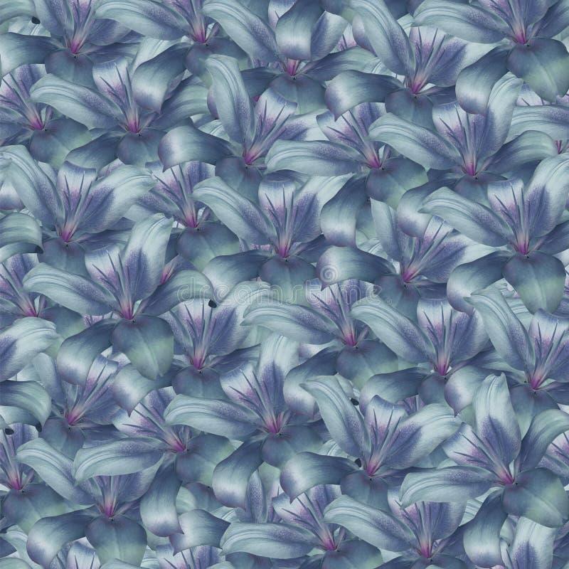 Безшовная бесконечная предпосылка флористическая Фиолетов-голуб-бирюза цветет лилия для дизайна и печатания Предпосылка естествен стоковые изображения