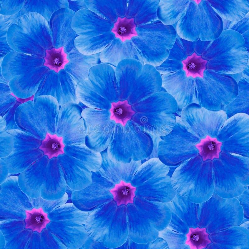 Безшовная бесконечная флористическая предпосылка для дизайна и печатания Предпосылка естественных голубых фиолетов стоковое изображение