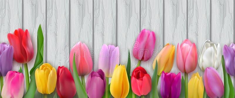 Безшовная горизонтальная картина с тюльпанами бесплатная иллюстрация