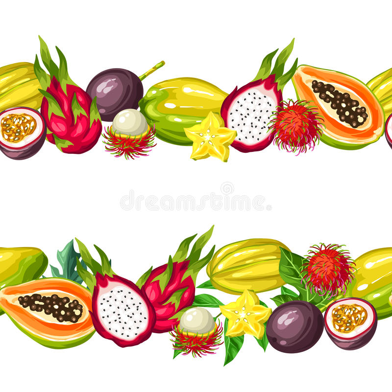 Безшовная граница с экзотическими тропическими плодоовощами Иллюстрация азиатских заводов иллюстрация штока