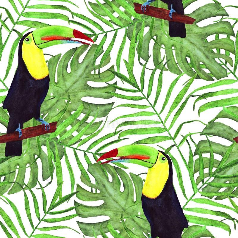 Безшовная иллюстрация акварели toucan птицы Тропические листья, плотные джунгли Картина с троповым мотивом летнего времени листья иллюстрация вектора