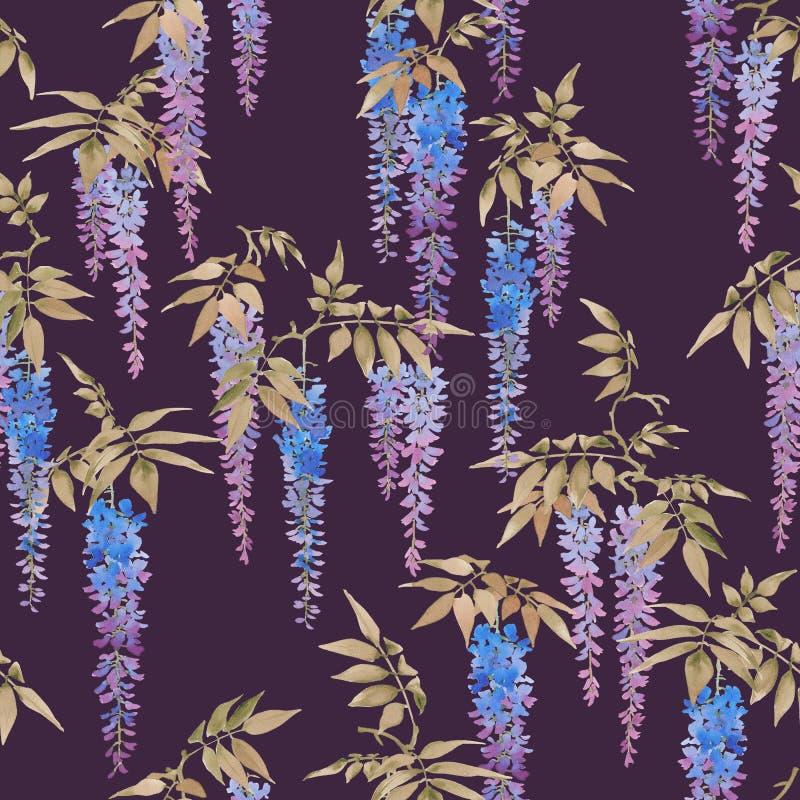 Безшовная картина акварели, группы глицинии в цветени иллюстрация штока