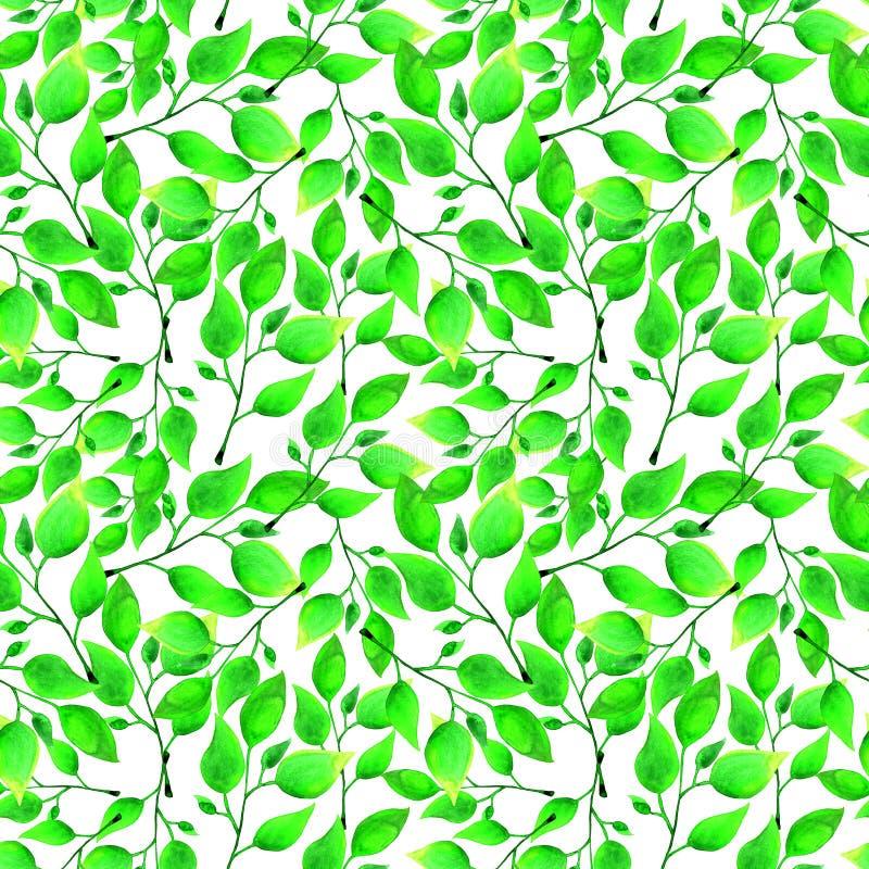 Безшовная картина акварели с зелеными листьями на белой предпосылке Бесконечное художественное произведение нарисованное вручную  иллюстрация штока