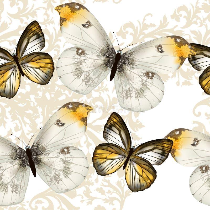 Безшовная картина обоев вектора с бабочками иллюстрация вектора