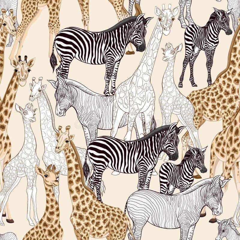 Безшовная картина, предпосылка с взрослой зеброй и жираф и зебра и новички жирафа также вектор иллюстрации притяжки corel иллюстрация штока