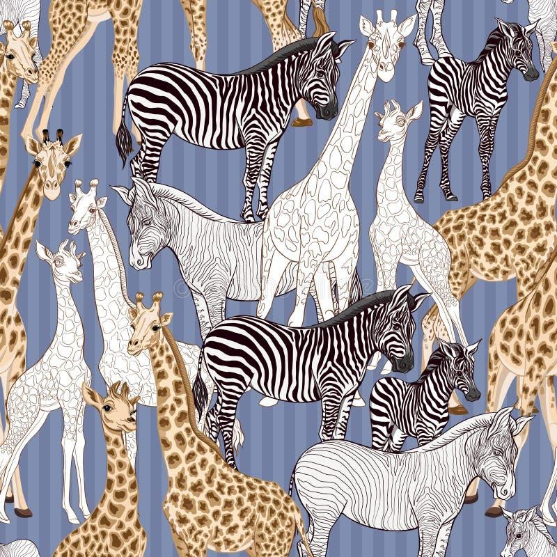 Безшовная картина, предпосылка с взрослой зеброй и жираф и зебра и новички жирафа также вектор иллюстрации притяжки corel бесплатная иллюстрация