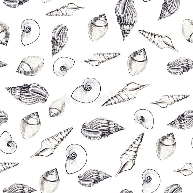 Безшовная картина раковин моря на белой предпосылке Ручные графики Дизайн для предпосылок, обоев и упаковки стоковая фотография