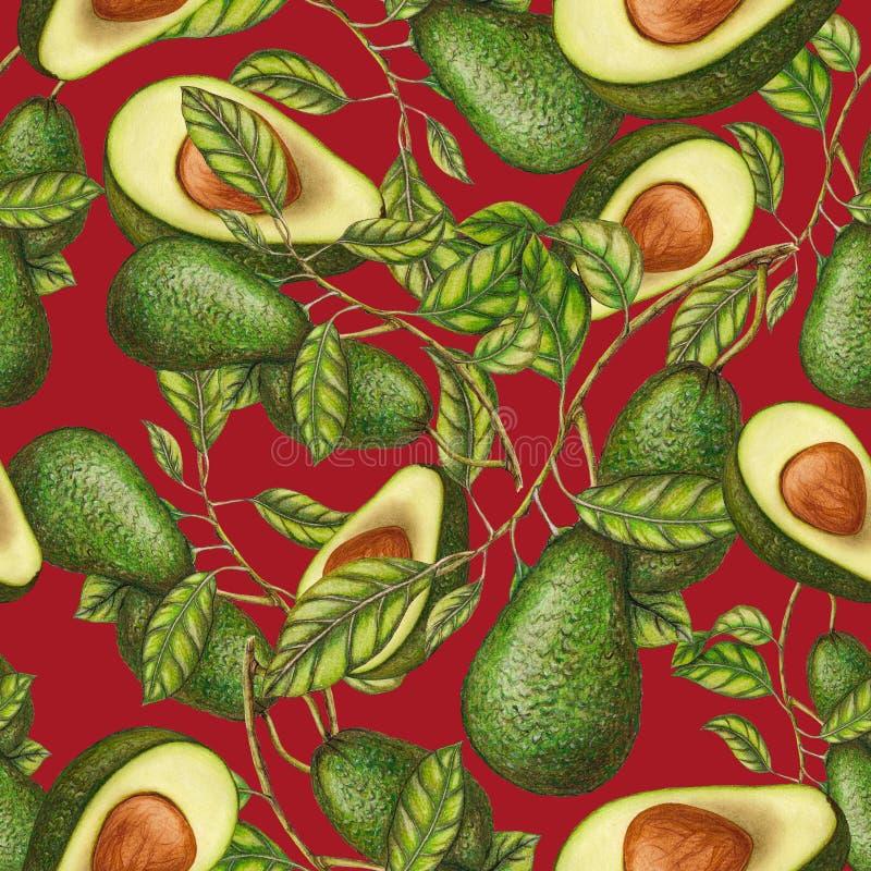 Безшовная картина свежих авокадоов иллюстрация штока