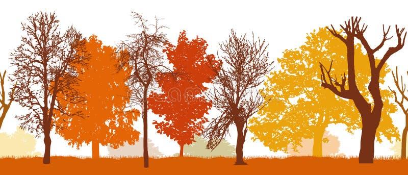 Безшовная картина силуэта деревьев парка осени различных, иллюстрации вектора иллюстрация штока