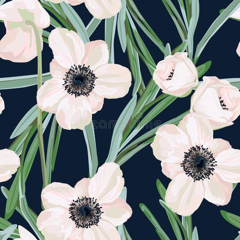 Безшовная картина с белыми цветками и евкалиптом ветреницы Дизайн зимы флористический для wedding приглашения иллюстрация штока