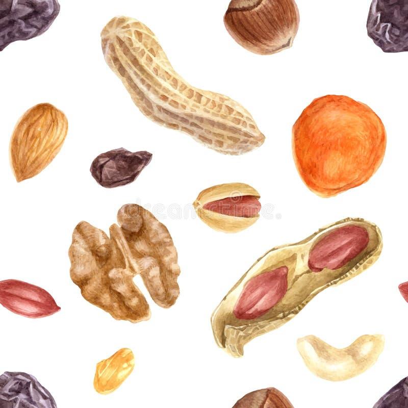 Безшовная картина с гайками и высушенными плодоовощами иллюстрация штока