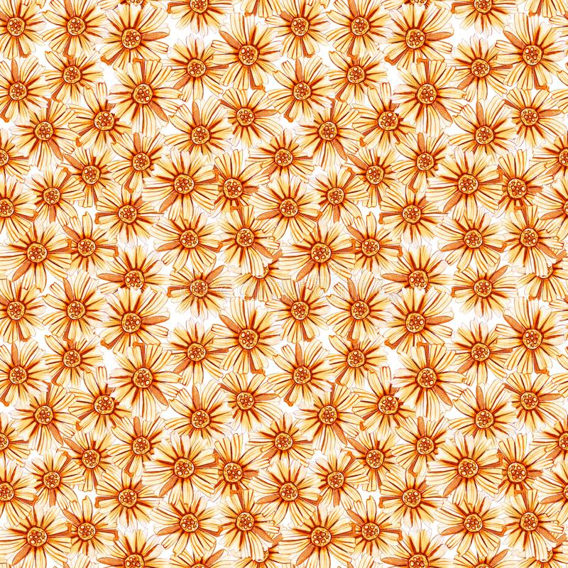 Безшовная картина с желтыми оранжевыми маргаритками стоковое изображение rf