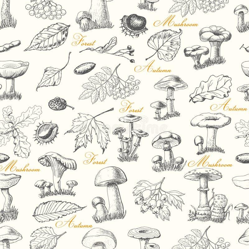 Безшовная картина с заводами и грибами леса иллюстрация штока