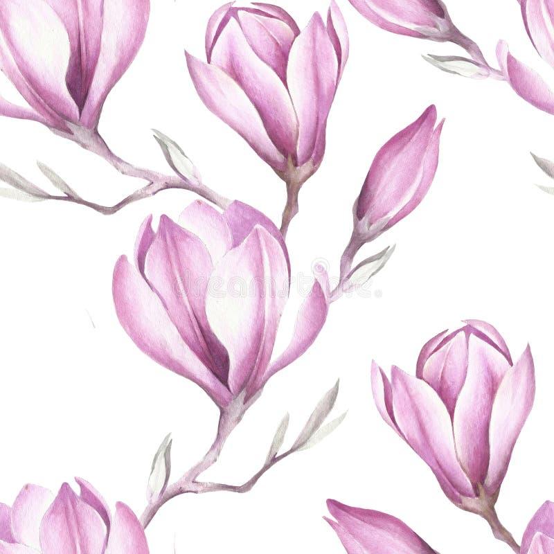Безшовная картина с зацветая хворостиной магнолии изображение иллюстрации летания клюва декоративное своя бумажная акварель ласто бесплатная иллюстрация