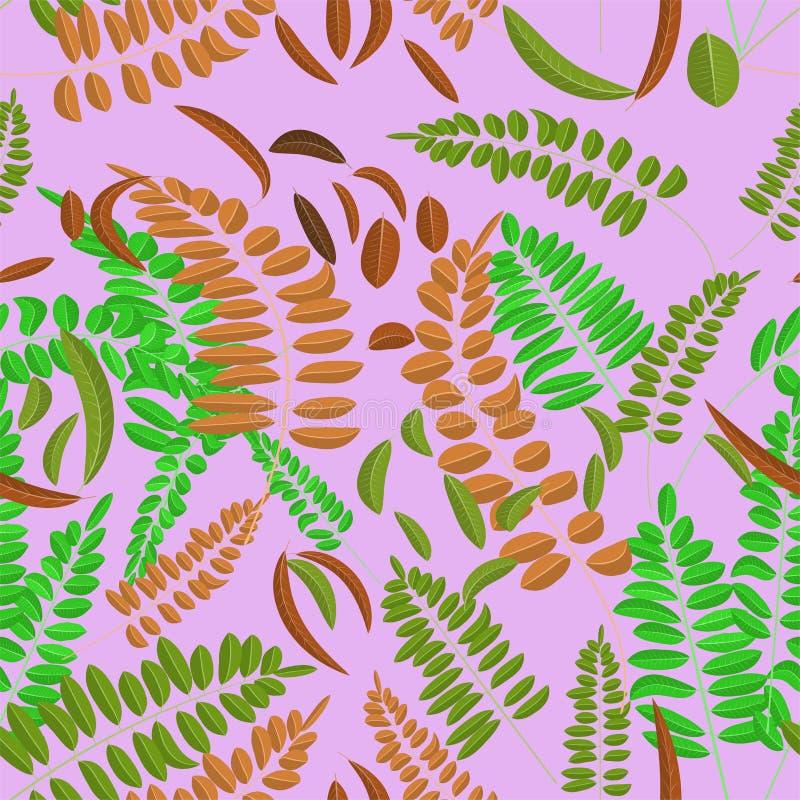 Безшовная картина с зеленым цветом и лист акации имбиря на фиолетовой предпосылке Иллюстрация вектора, осень, листья акации иллюстрация вектора