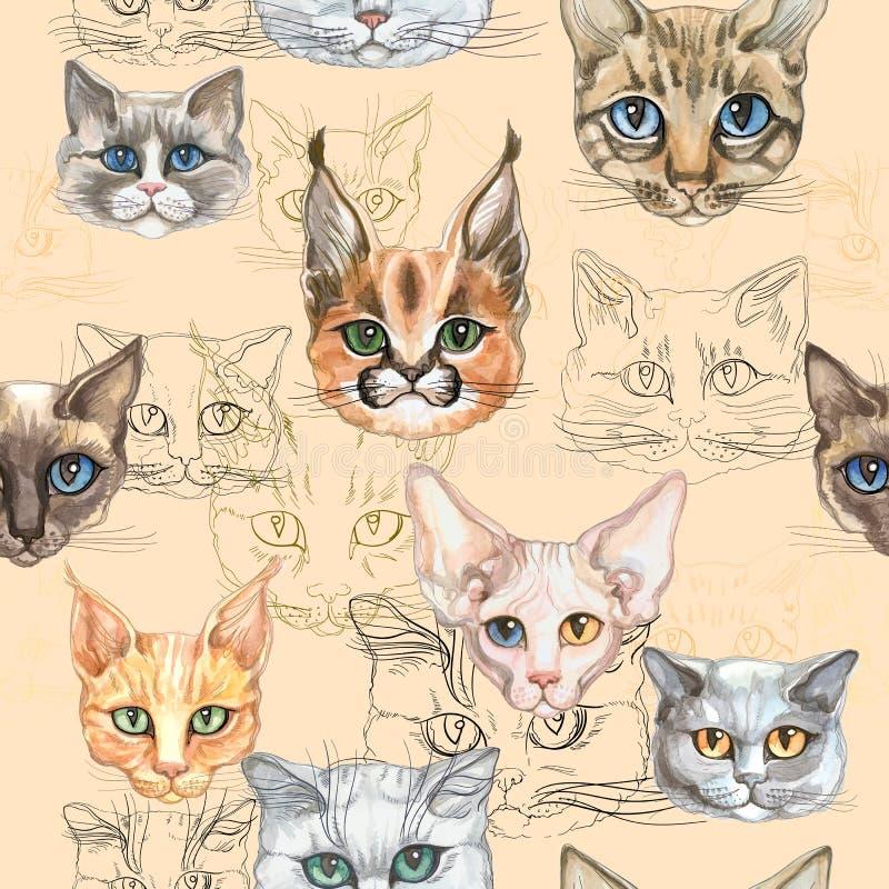 Безшовная картина с котами различных пород Акварель r иллюстрация вектора