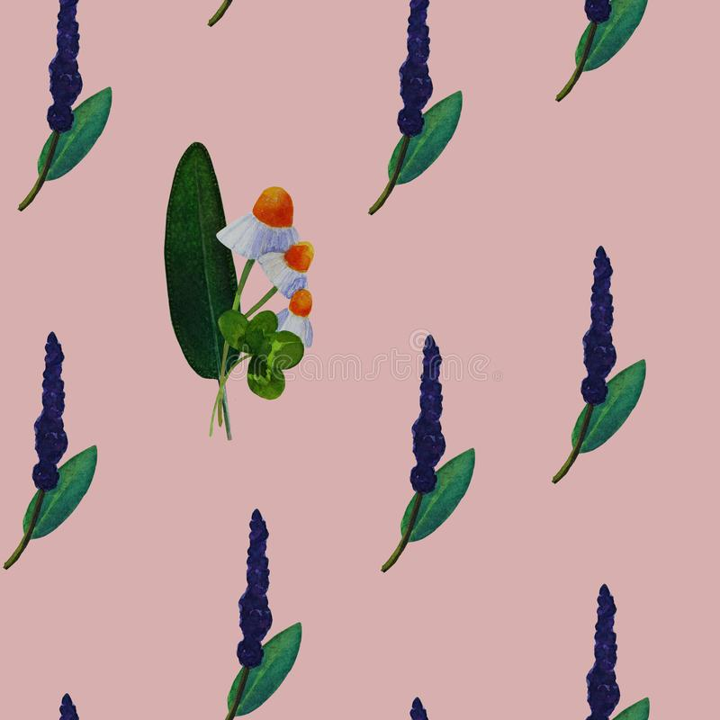Безшовная картина с лекарственными растениями иллюстрация штока