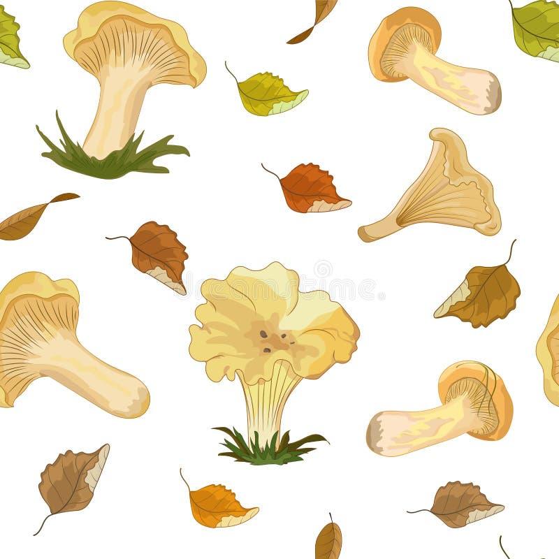 Безшовная картина с лисичками грибов леса на белой предпосылке с листьями осени летания иллюстрация вектора