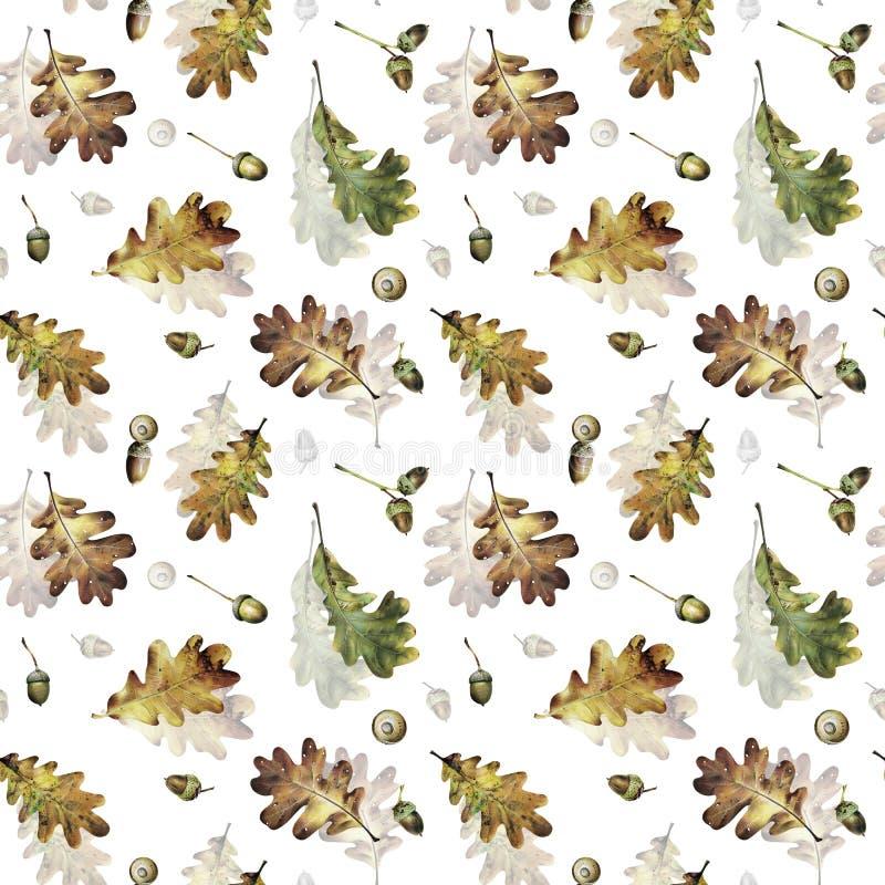 Безшовная картина с листьями осени дуба и жолудей иллюстрация штока