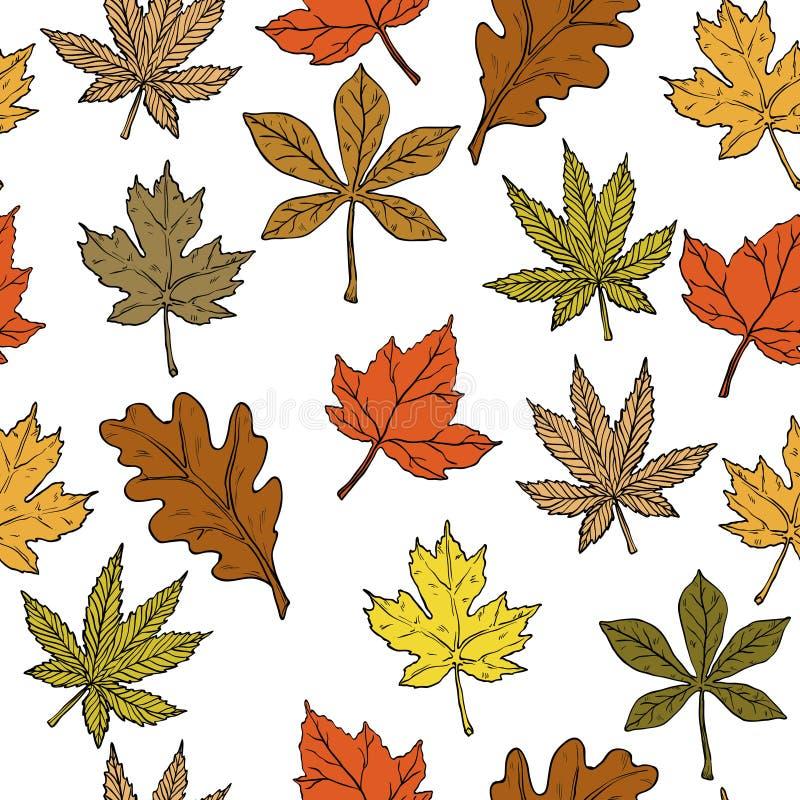 Безшовная картина с листьями осени на белой предпосылке бесплатная иллюстрация