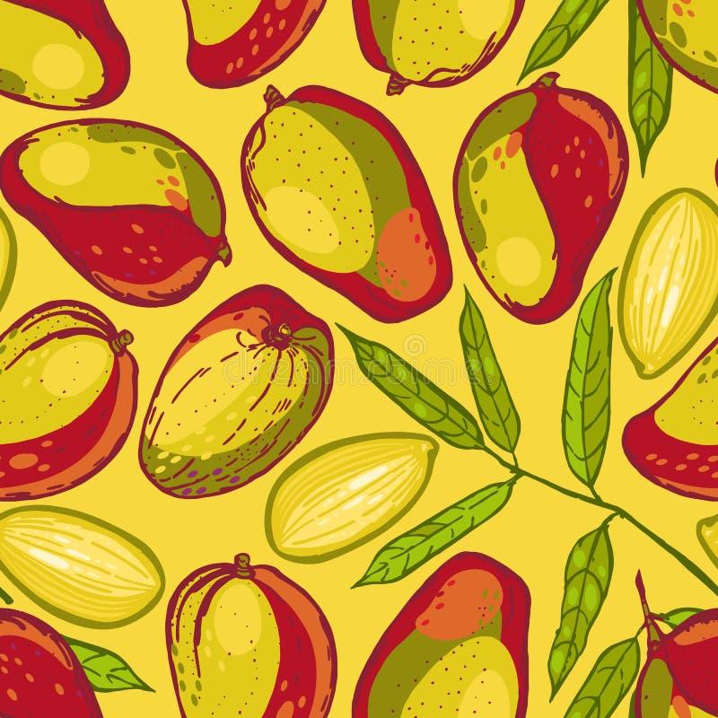 Безшовная картина с манго Собрание манго плодоовощ тропический Нарисованная рукой предпосылка еды иллюстрация вектора