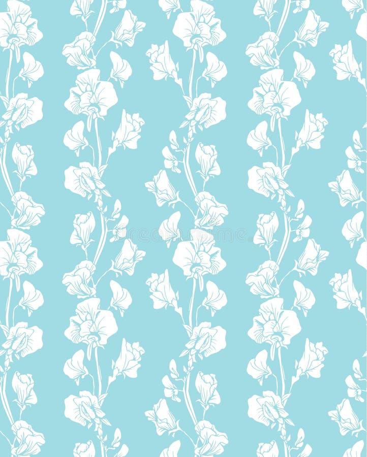 Безшовная картина с реалистическими графическими цветками - сладостный горох иллюстрация штока