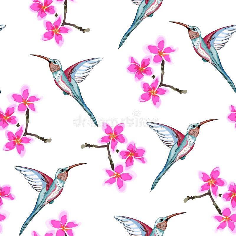 Безшовная картина с розовыми цветками Флористическое décor ветви plumeria и экзотической тропической птицы припевать бесплатная иллюстрация