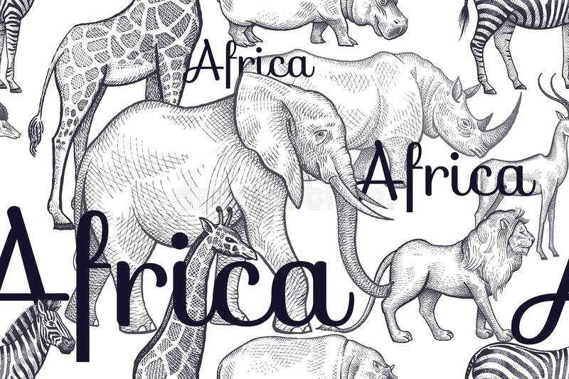 Безшовная картина с слонами, жирафами, носорогами, гиппопотамами, львами иллюстрация вектора