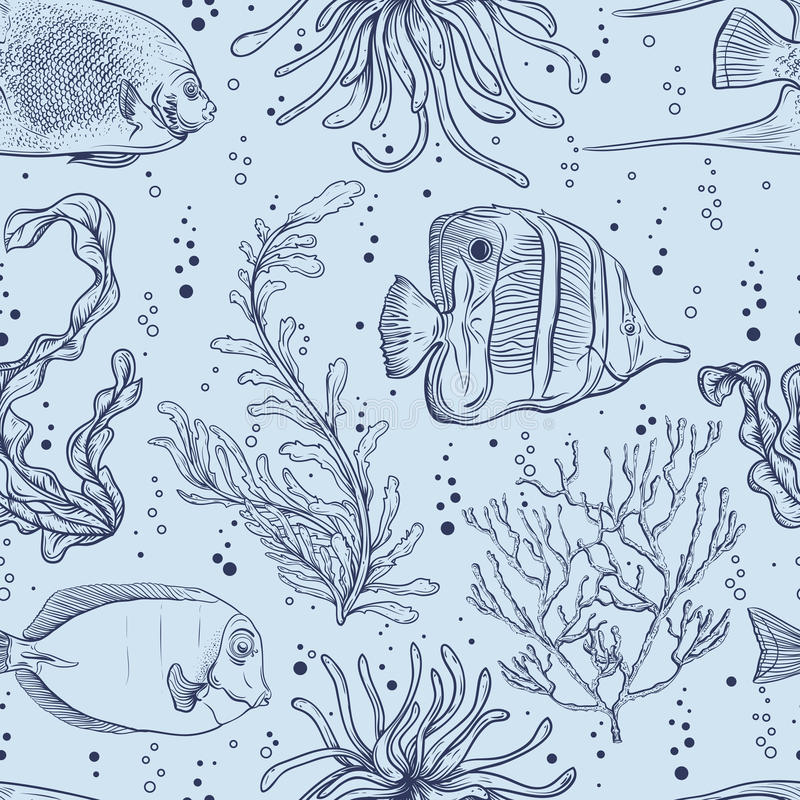Безшовная картина с тропическими рыбами, морскими заводами и морской водорослью Винтажная рука нарисованная морская флора и фауна иллюстрация штока