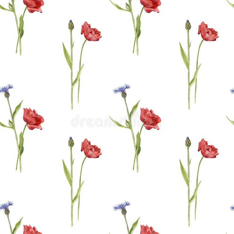 Безшовная картина с цветками акварели иллюстрация вектора