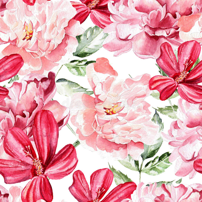 Безшовная картина с цветками акварели peonies бесплатная иллюстрация
