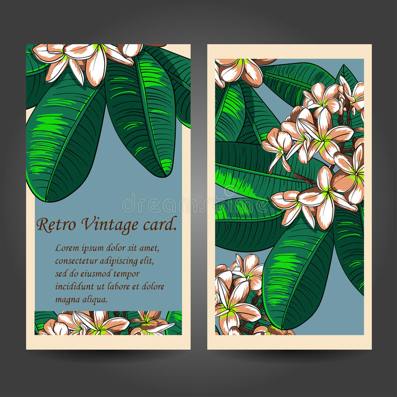 Безшовная картина с цветками и Frangipani plumeria иллюстрация вектора
