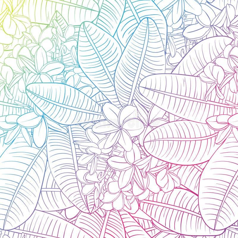 Безшовная картина с цветками и Frangipani plumeria бесплатная иллюстрация