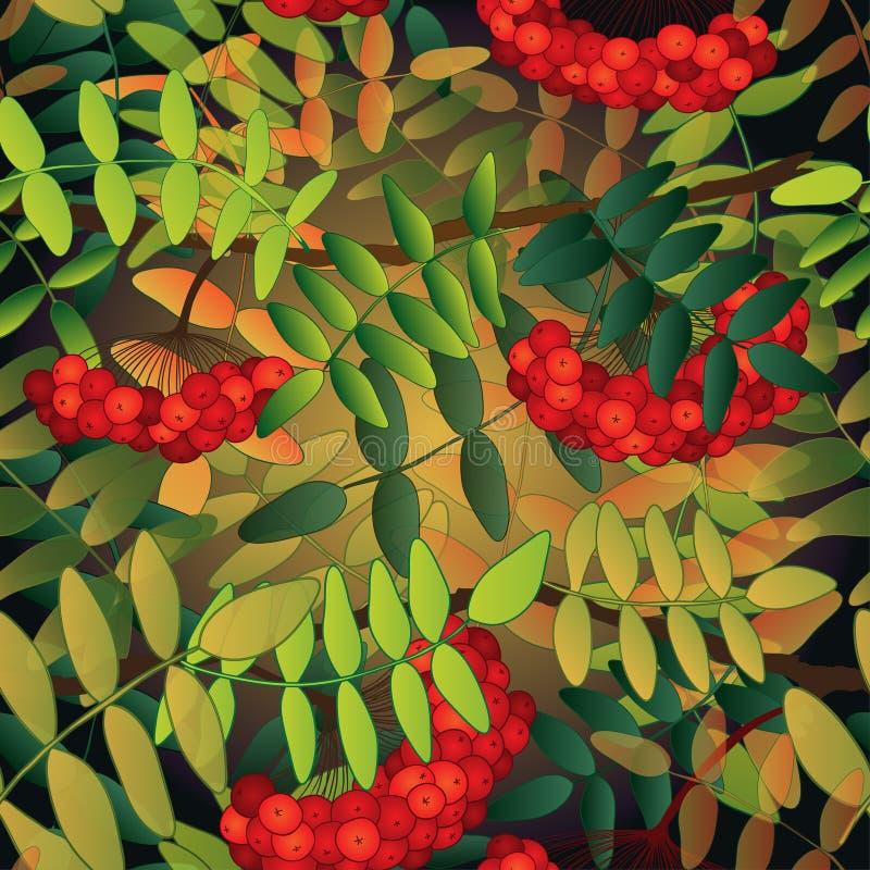 Безшовная картина с ягодами рябины иллюстрация вектора