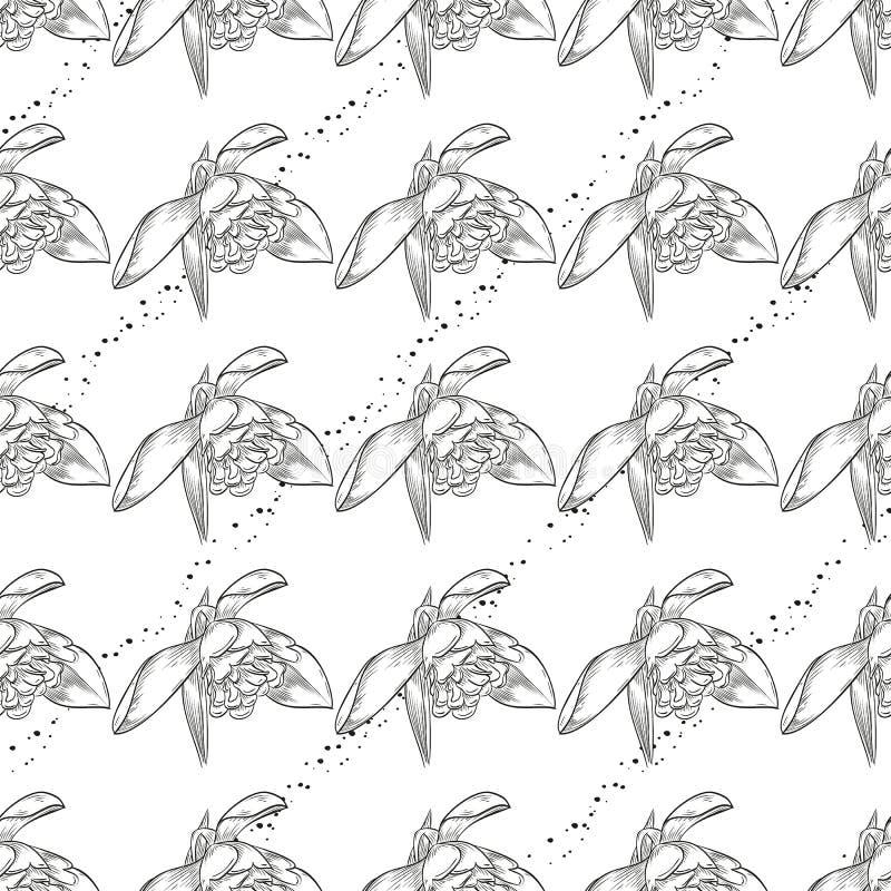 Безшовная картина с snowdrops иллюстрация вектора
