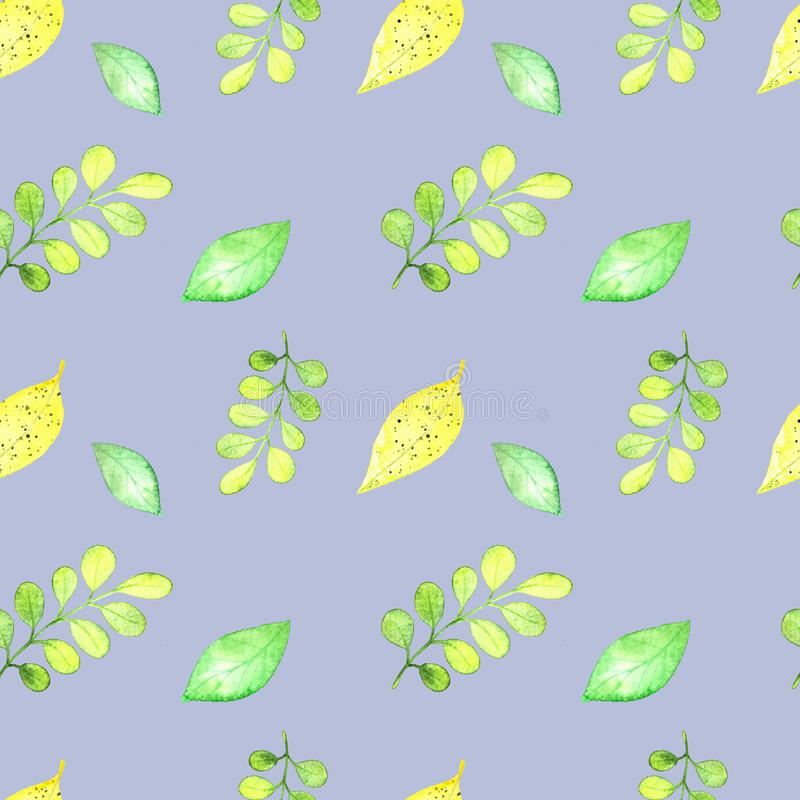 Безшовная картина, тропические листья frash иллюстрация вектора
