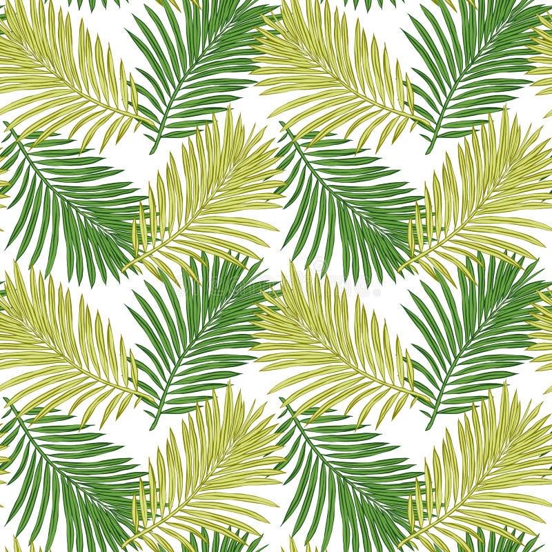 Безшовная картина тропических листьев r Тропическая иллюстрация Листва джунглей иллюстрация штока