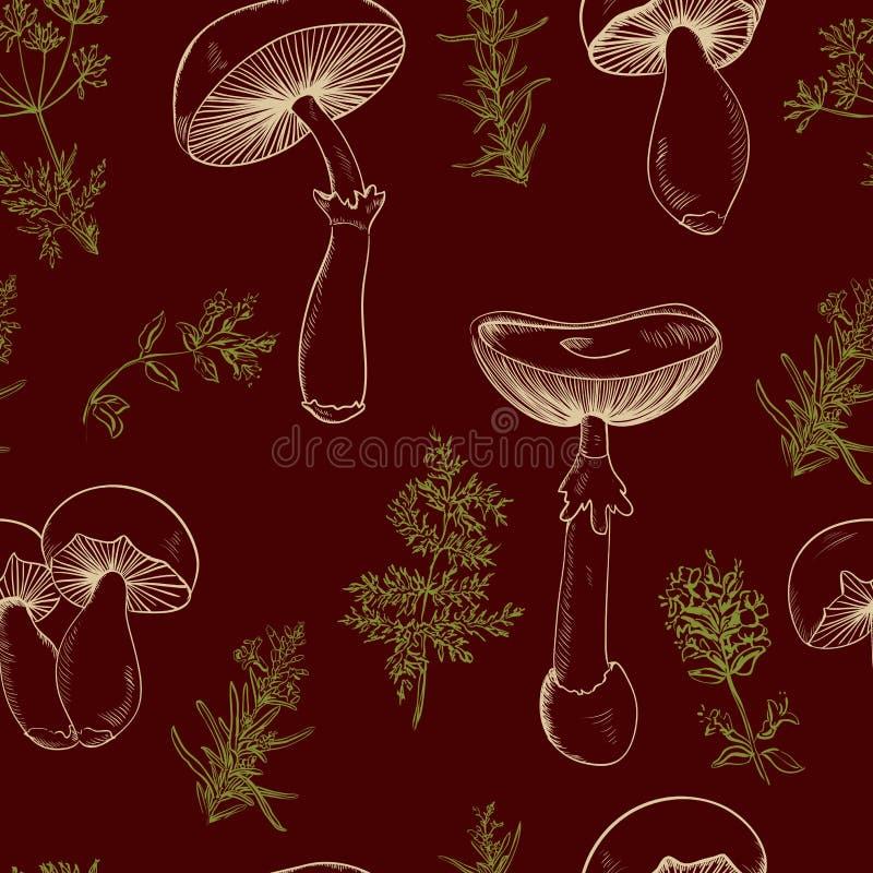 Безшовная картина установила с разнообразие грибами года сбора винограда и ветвями розмаринового масла, тимиана, тимона Ретро нар иллюстрация вектора