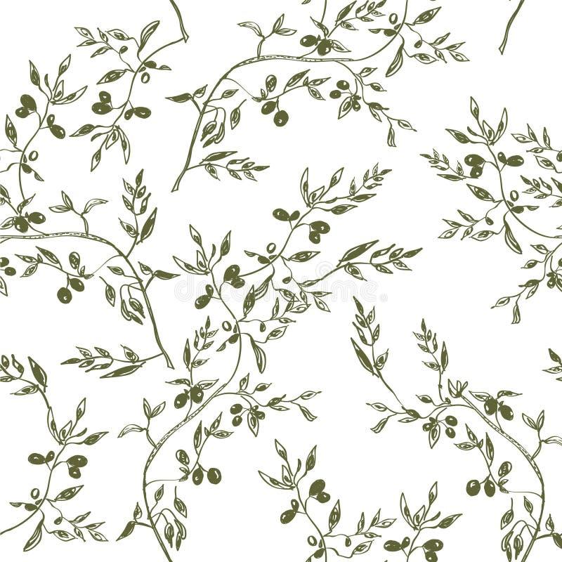 Безшовная нарисованная рука картины оливковой ветки иллюстрация штока