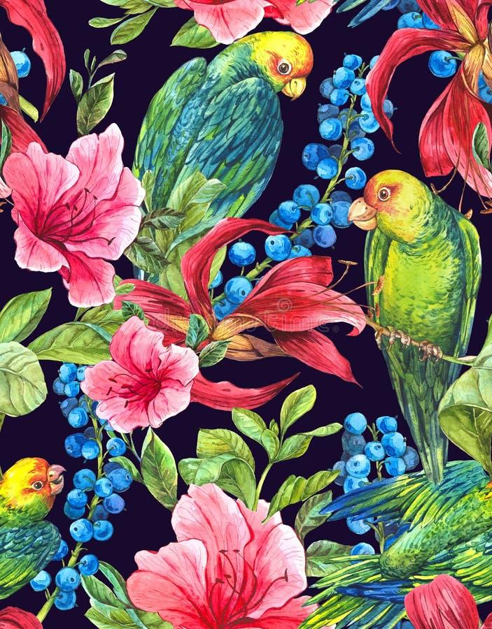 Безшовная предпосылка с тропическими цветками, попугаями бесплатная иллюстрация