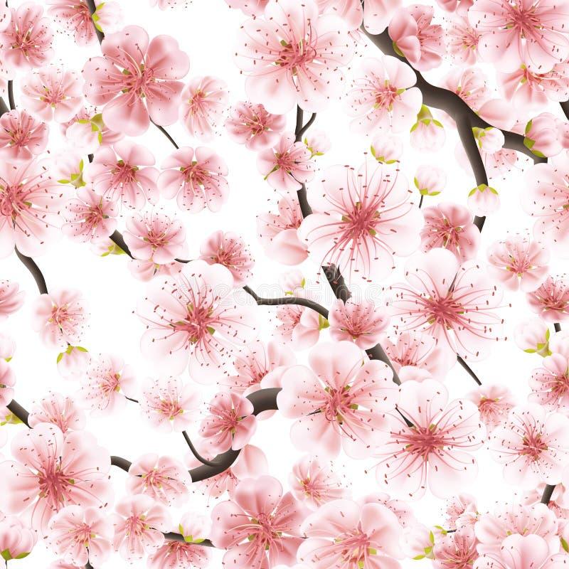 Безшовная розовая вишня Сакуры цветя 10 eps бесплатная иллюстрация