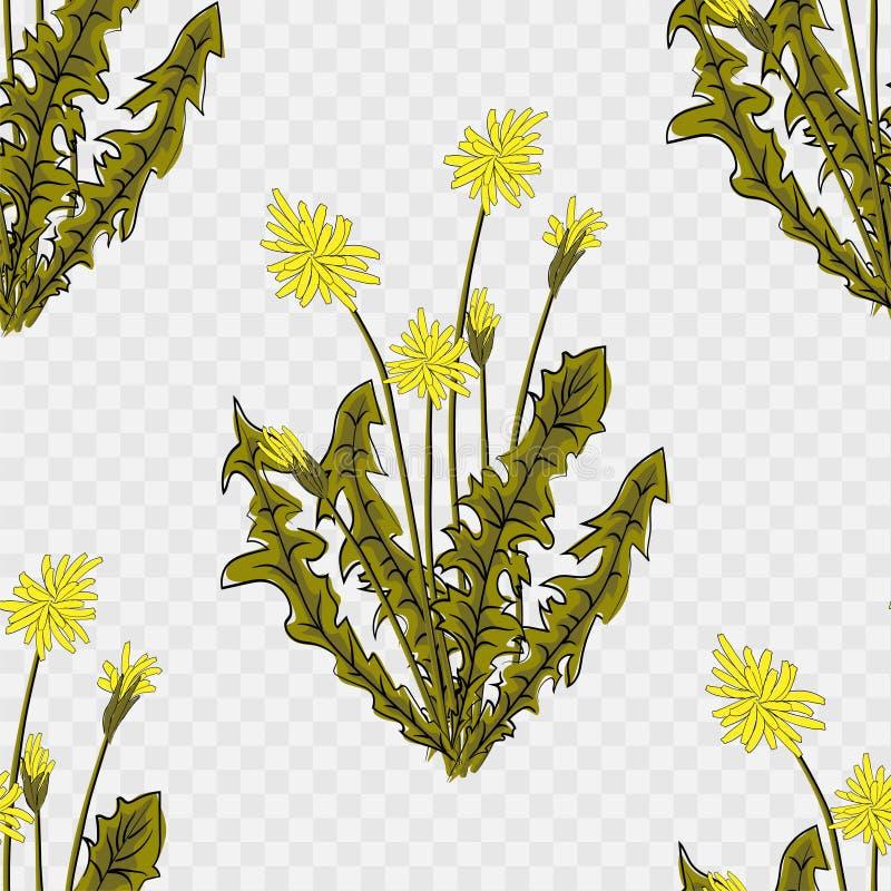 Безшовная стильная картина с одуванчиками Декоративная флористическая предпосылка иллюстрация вектора